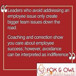 Fox & Owl - Leadership Rescue Coaching Graphic