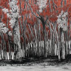 Paisagem XIV - Floresta em sépia
