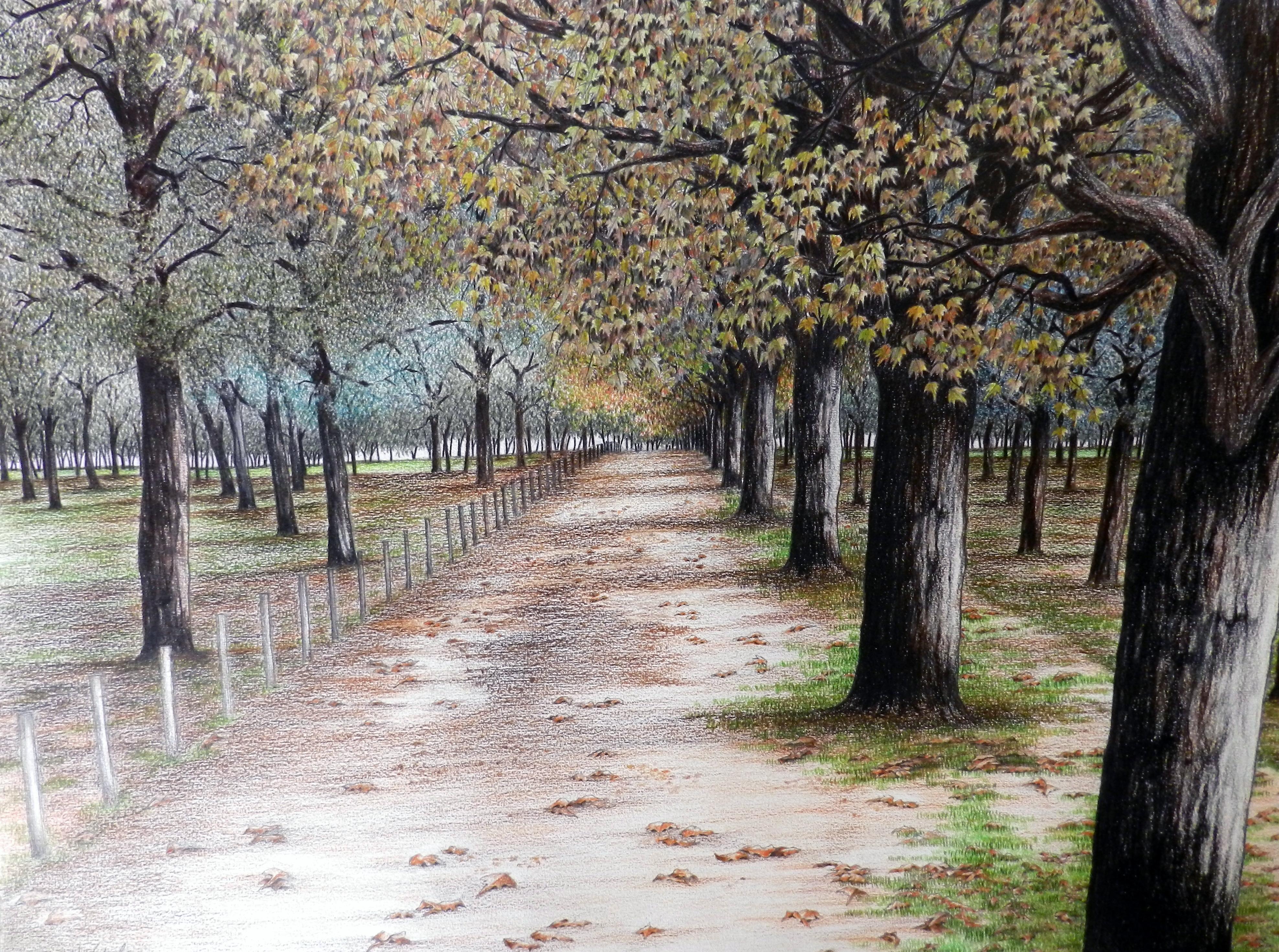 Paisagem XIX - Parque Marinha IV