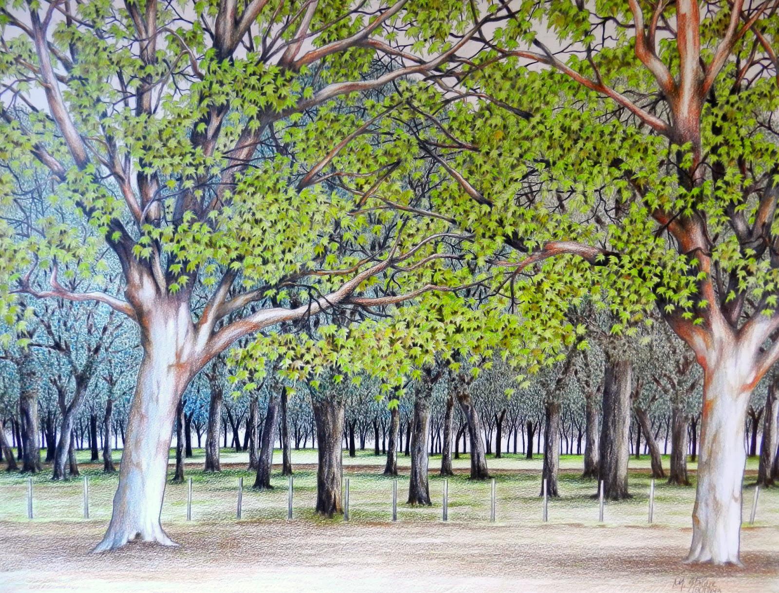 Paisagem XXI - Parque Marinha V