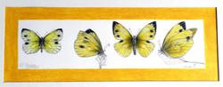 Borboletas amarelas