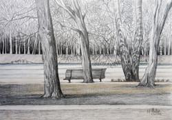 Paisagem IV - Bosque no Inverno
