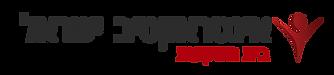 לוגו בית השקעות אייקון כהה.png