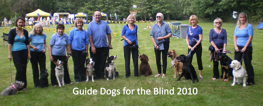 2010Guide Dogs for the Blind.jpg