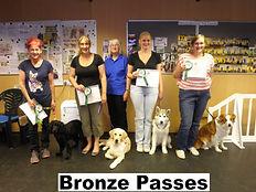 Bronze Training Passes
