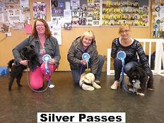 Silver Training Passes