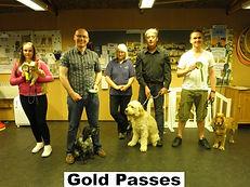 Gold Training Passes