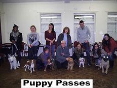 Puppy Training Passes
