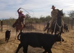 debbie cowgirl_edited