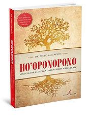 livro 2 wix.jpg