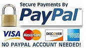 Secure Payment PayPal