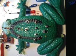 74c40 frog