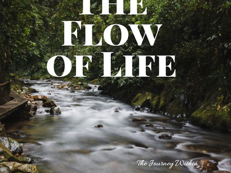 The flow of Life