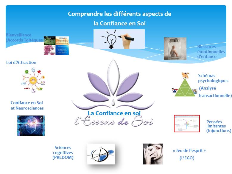 CONFIANCE EN SOI - CARTE HEURISTIQUE DES