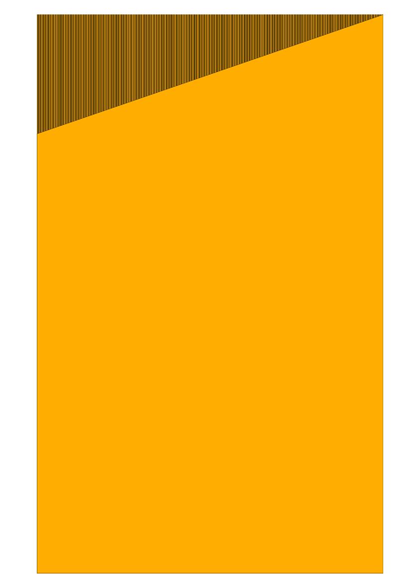 LOGO orange blank.png
