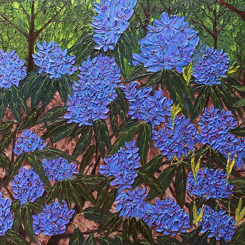 Blue Purple Rhododendron #1