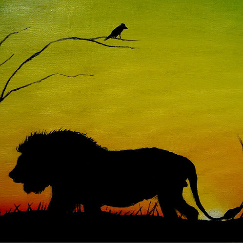 African Lion #15