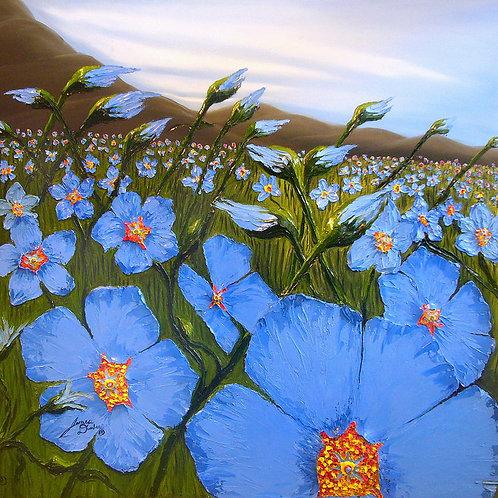 Field Of Blue Flax Flowers 11
