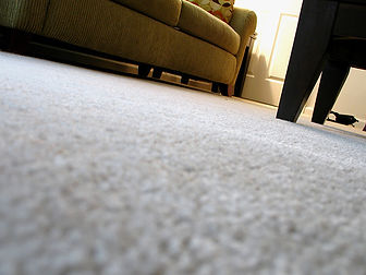 Cloud9 Carpet Cleaning