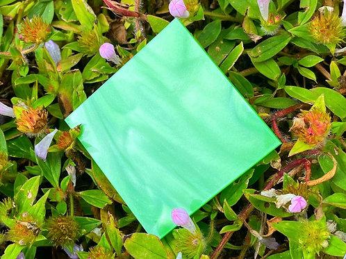 Key Lime Pearl Acrylic