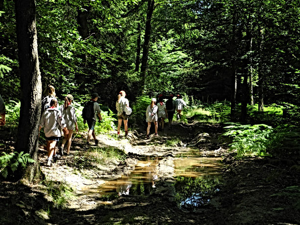 Camp 2020 -Scout - Haut-Fays (255).JPG