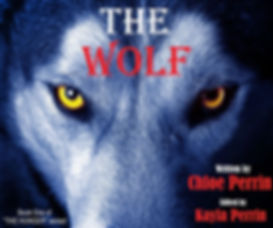Cover--THE WOLF-version2.jpg