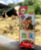 Did you know that our flavoured milk has
