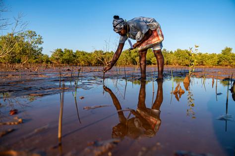 EDEN-Madagascar 2020 (10).jpg