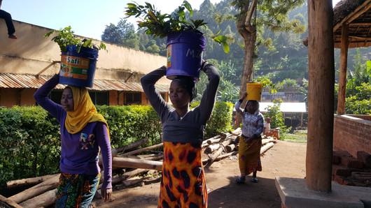 Usambara_Tanzania 20.jpg