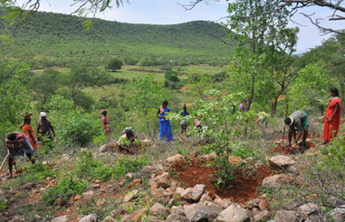 Veerakaradu_India_1.jpg