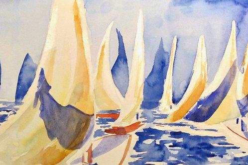 A Sea of Sails