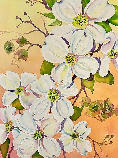 White Blossoms on Golden