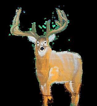 mule deer vector.png