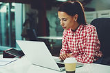 Young woman working on laptop in the off