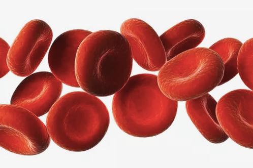 Functional Blood Chemistry Analysis (FBCA)