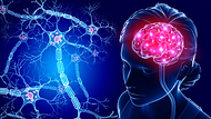 Brain-Neuron (Getty Images).png