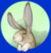 LAPIN 2.jpg