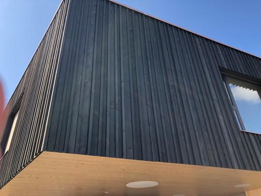 Ecole de Sorens - Sapin blanc, mais noir