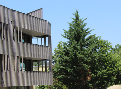 Immeubles Schlösslipark, Le bois métallisé dans toute sa splendeur!
