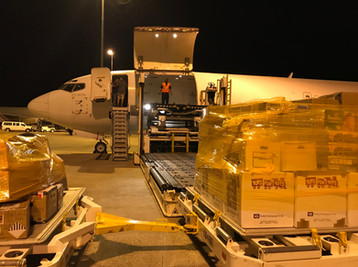HLPair 737