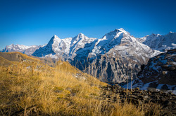Eiger Mönch und Jungfrau
