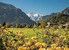 Höhematte in Interlaken with mount jungfrau