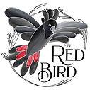 Red Bird square.jpg