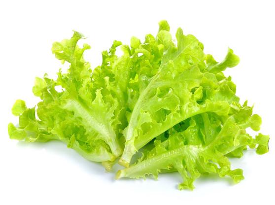 vegs_green_lettuce2.jpg