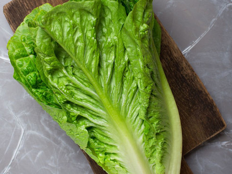What is green romaine lettuce?