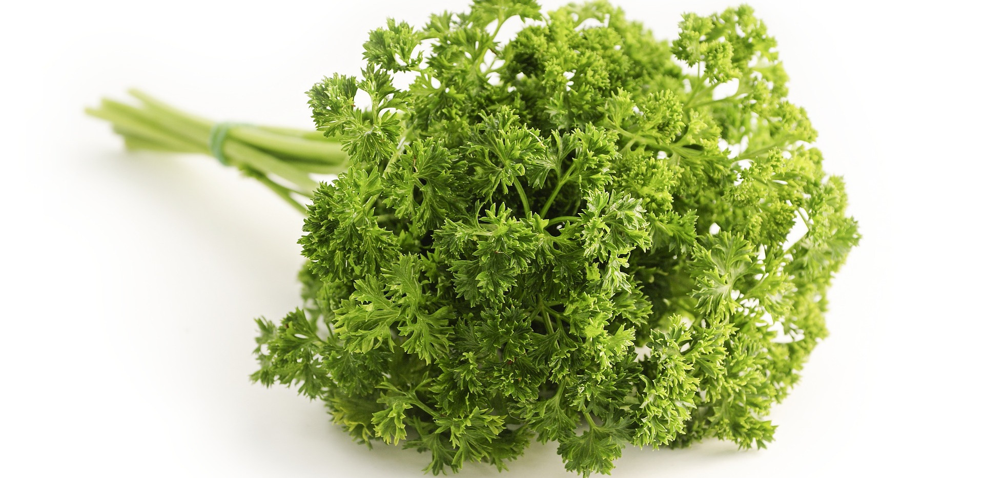 parsley-1665402_1920.jpg