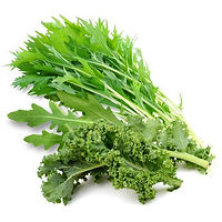vegs_salad-special3_edited.jpg