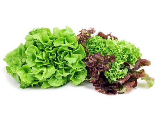 vegs_lettuces-selected3_edited.jpg