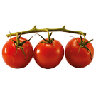 cherry-tomato-n.png