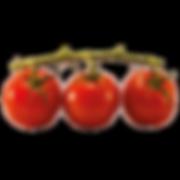 cherry-tomato-n.png